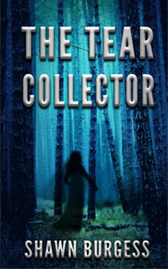 Book Giveaway For The Tear Collector Has Ended